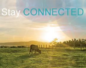 Stay connected with biosecurity alerts
