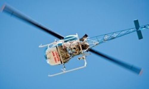 Fire ant survey helicopter in flight