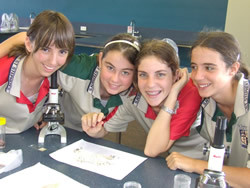 Year 8 students from St Stephen's Catholic College studying stored grain pests