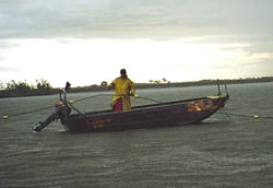 A commercial fisherman in a dory