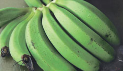 Banana fruit with small black spot scars