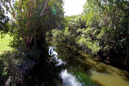 Defined waterway: Sandy Creek, Homebush QLD