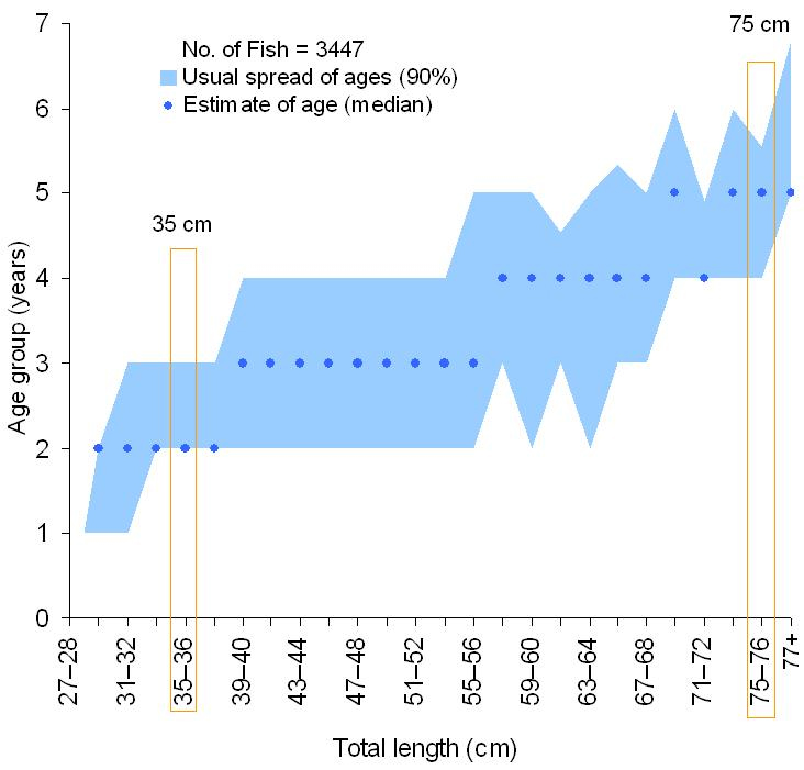 Age-at-length graph for Tailor. Shaded sections show the 5th to the 95th percentile from each length category.  Points mark the median age. Sample size is 3447 fish.