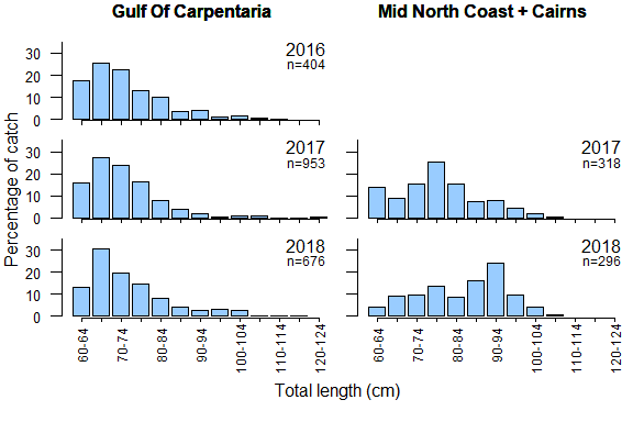Monitoring results from King threadfin commercial catches - Length frequency (presented in 50mm total length size classes) for years 2016 to 2018 in the Gulf of Carpentaria and 2016 and 2017 for the combined regions of the Mid North Coast and Cairns
