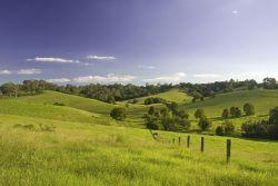 Queensland Agricultural Land Audit
