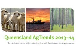 Queensland's primary industries trends