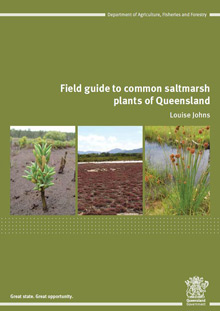 Field guide to common saltmarsh plants of Queensland by Louise Johns.