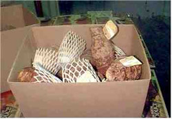 Taro corms in 10kg cartons