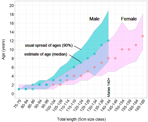 Age at length graph for male (blue) and female (pink) Spanish mackerel, shaded sections shows the 5th to the 95th percentile of the data, symbols mark the median age at each length.""