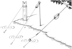 Line drawing of fishing lines