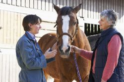 Animal health and diseases